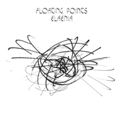 42 - floating points